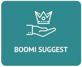 Boomi Suggest